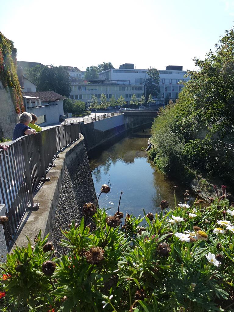 Die Murg ist ein 34 km langer Nebenfluss der Thur in der Schweiz.